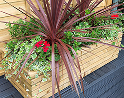 Rectangular contemporary planter