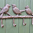 Singing birds coat hook