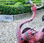 Ornamental alert flamingo