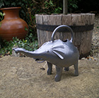 Ornamental watering can