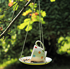 Spots and dots teacup feeder